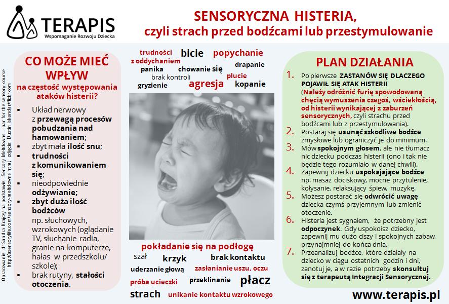 Terapia SI Poznań